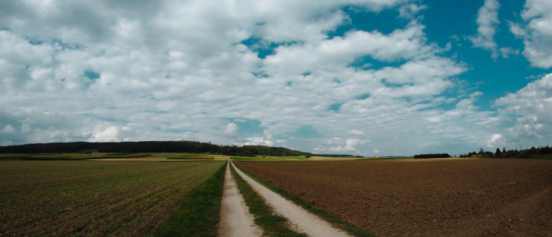 Landschaftsbild, Weg, Wald, Felder